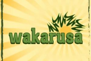 Wakarusa announces lineup