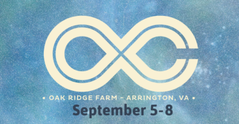 Lockn' Festival - Arrington, VA - September 2013