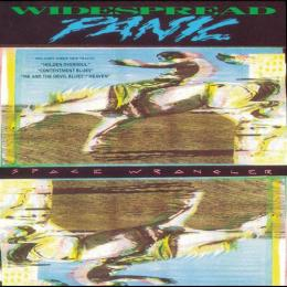 Widespread Panic - Space Wrangler (Vinyl 2LP)
