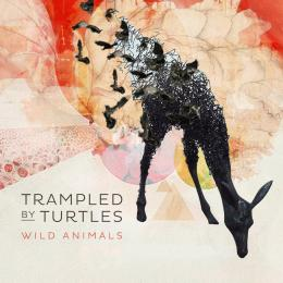 Trampled By Turtles - Wild Animals CD