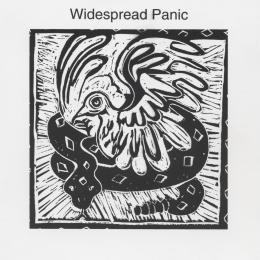 Widespread Panic - Widespread Panic (Vinyl LP)